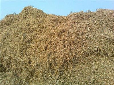 大豆秸秆深加工制成燃料颗粒、饲料,全身都是宝